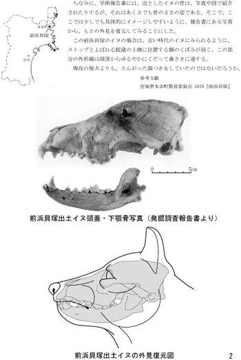 Maehamainu02_3